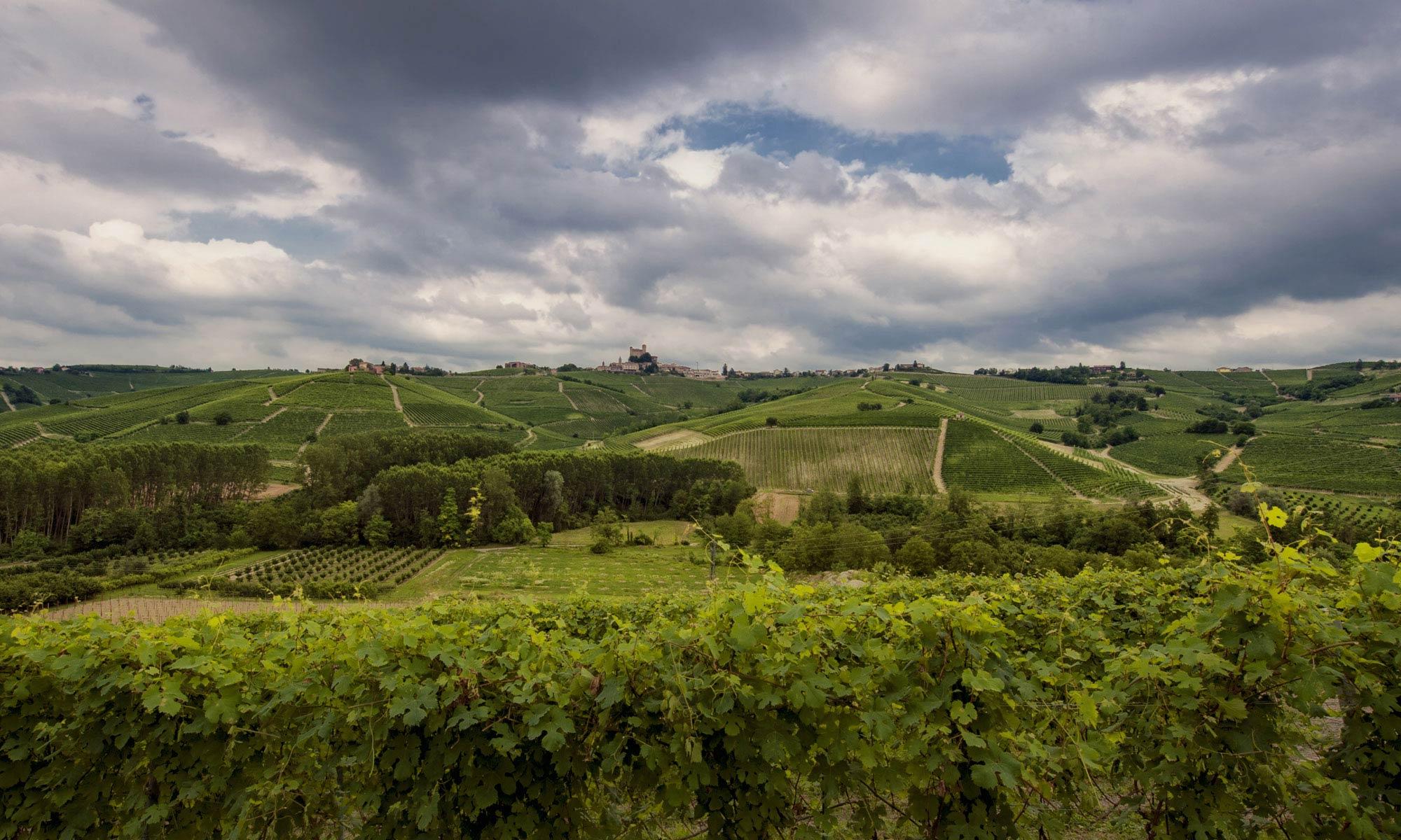 Un itinerario per l'estate: da Montelupo Albese a Monforte d'Alba