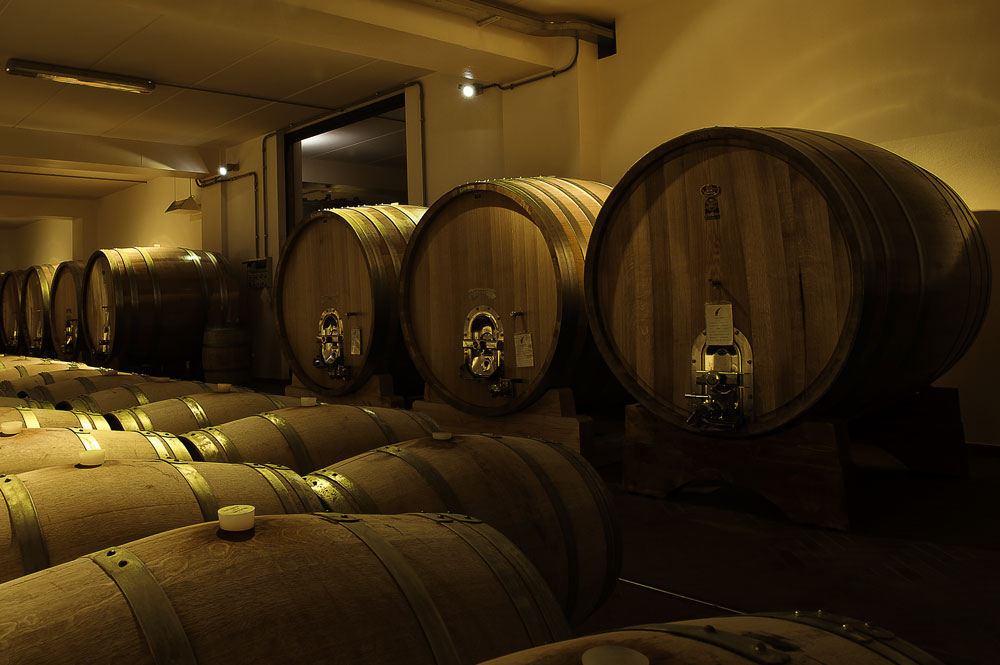 Adopt a row: at the origins of Barolo