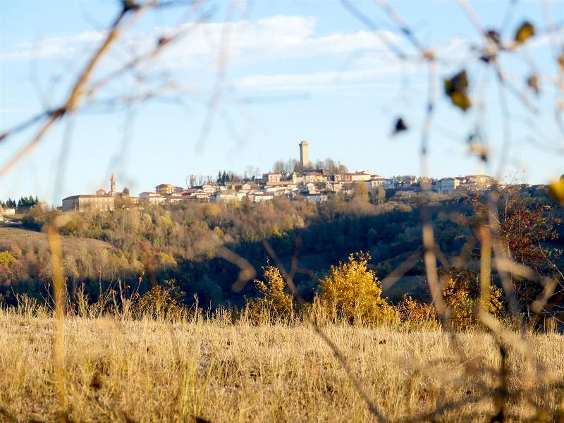 Murazzano e l'Alta Langa: tra boschi, vigne e leggende